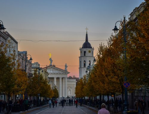 The Partner Perspective – Lithuania